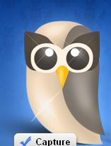 hootsuie owl